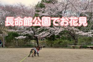 長命舘公園