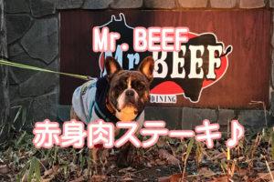 Mr.BEEF
