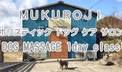 MUKUROJI ホリスティック ドッグ ケア サロン