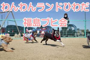 福島ブヒ会 春の芋煮会 2021