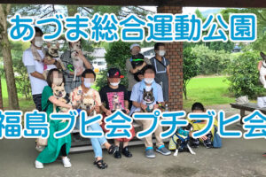あづま総合運動公園