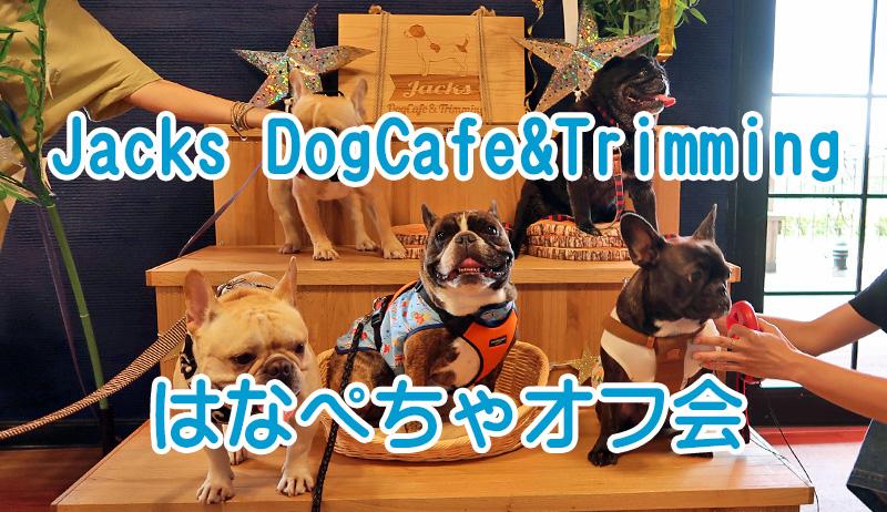 Jacks DogCafe&Trimming (ジャックス) はなぺちゃオフ会キャラバン