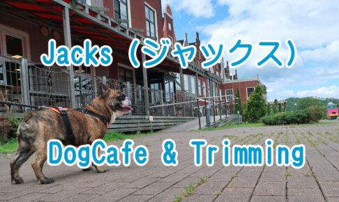 Jacks DogCafe&Trimming (ジャックス)